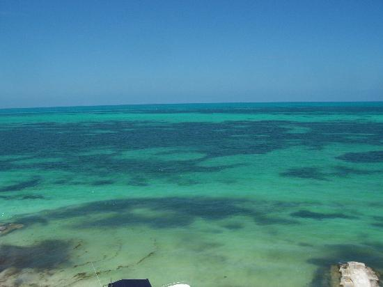 Casa Maya Holbox: View from light  house - Cabo Catoche