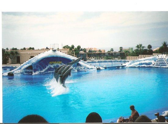 Aqualand Costa Adeje Tenerife Spain Hours Address