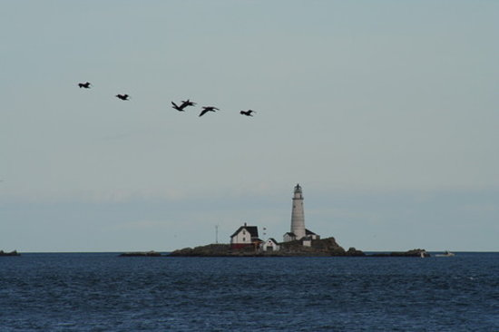 Boston Light is the nation's first lighthouse site
