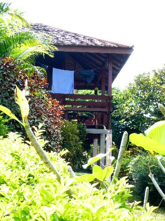 Phanom Bencha Mountain Resort: our bungalow nestled in the hillside