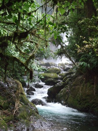 San Carlos, Kosta Rika: You'll never forget Costa rica