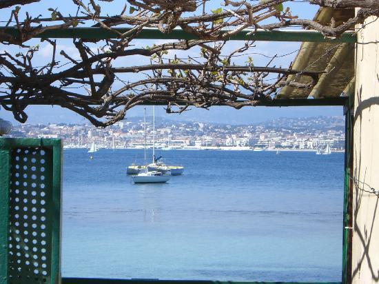 Iles de Lerins: vue sur cannes