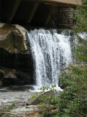 Waterfall Under The House Picture Of Fallingwater Mill
