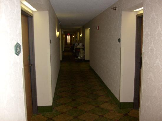 Hampton Inn Uniontown: Hallway