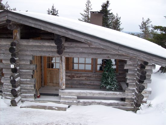 Hotel Iso-Syote: Our Log Cabin