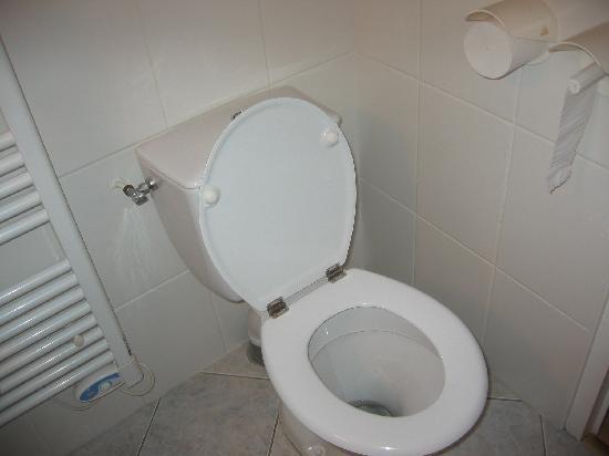 Beaune Hotel: les toilettes