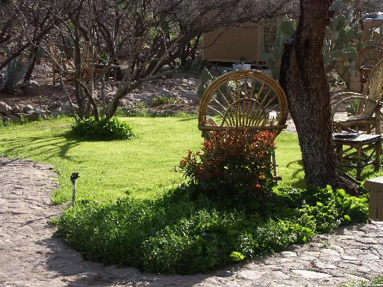Tubac Country Inn: Almost spring, and the weather was gorgeous