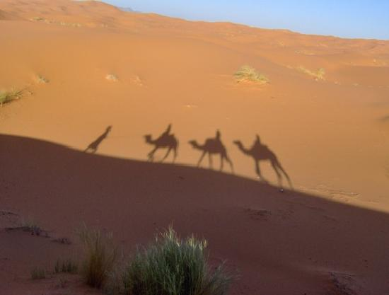 Guest House Merzouga: Shadows on the sand
