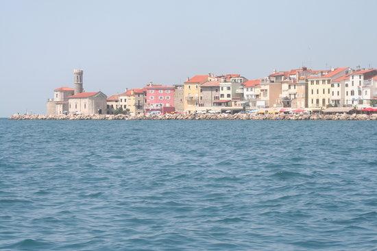 Piran : vue depuis la mer
