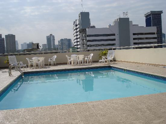 Sevilla Suites Apart-Hotel : Pileta de la terraza