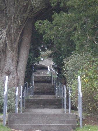 Cratloe Woods: Cratloe grotto