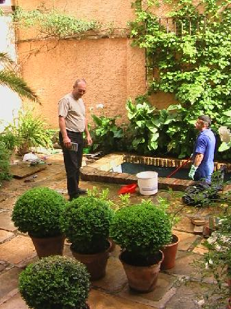 Casa Del Aljibe Guest House: The pond cleaning