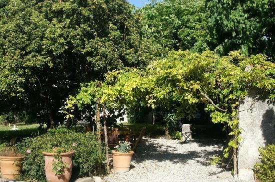 Villa de Lorgues : le jardin la tonnelle