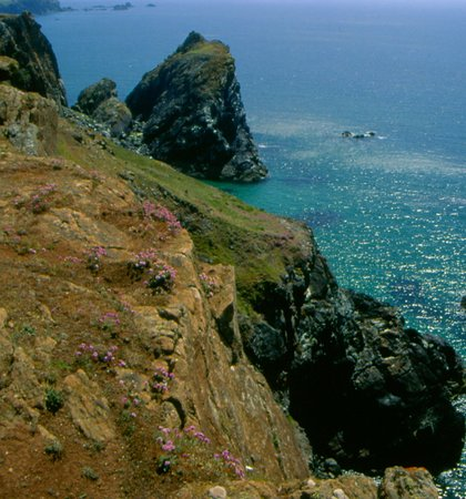 Графство Корнуолл, UK: Kynance Cove, The Lizard, Cornwall