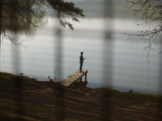 Lake Catherine State Park: DOCK taken from screened porch-