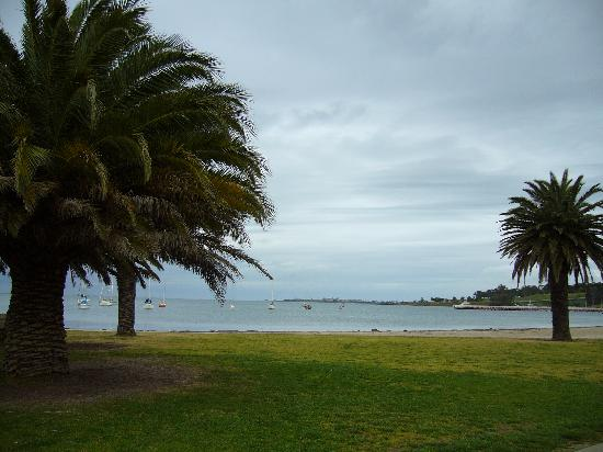 Nireeda Apartments: A view from the seafront at Geelong