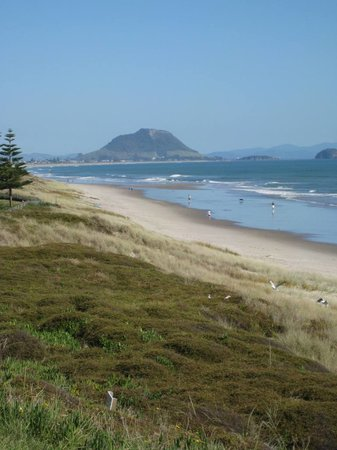 Bed and breakfast i Tauranga