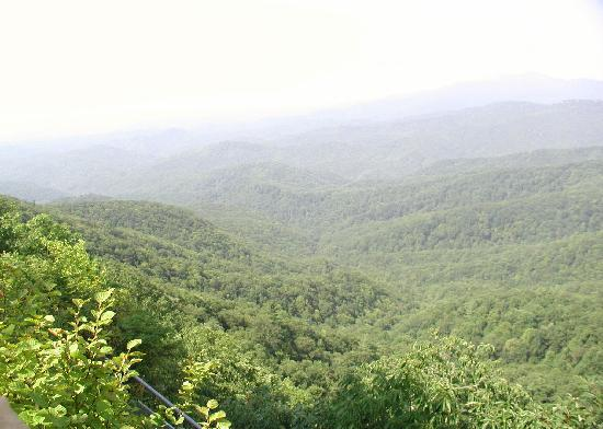 The Blowing Rock: View from the deck!