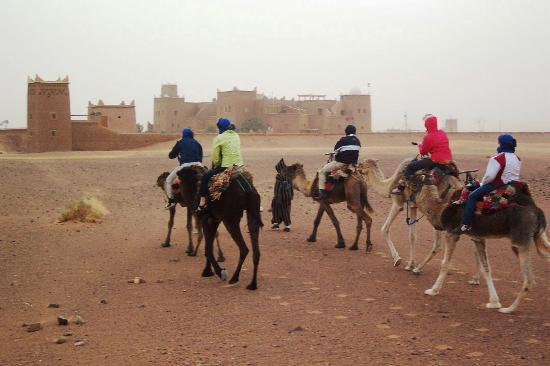Stargazing Hotel Sahara Sky : Camelride to Tinfou Dunes and hotel