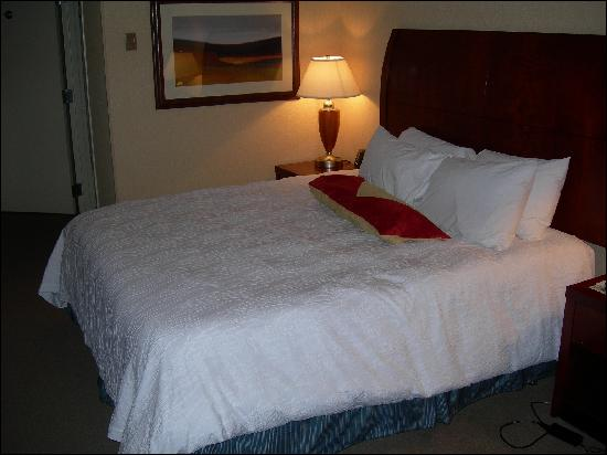 Hilton Garden Inn Columbus-University Area: King Bed