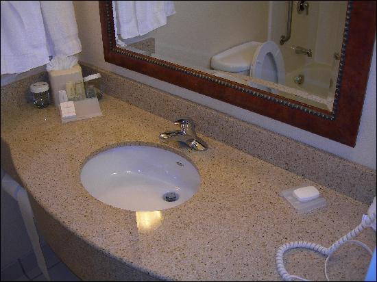 Hilton Garden Inn Columbus-University Area: Bathroom counter