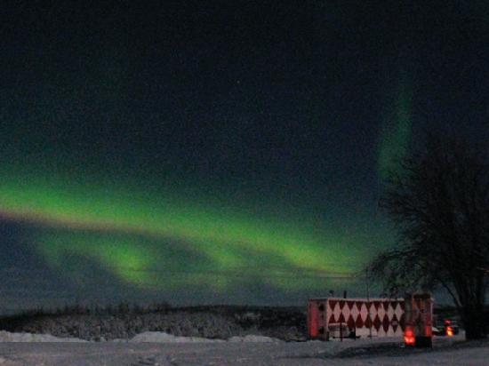 Bettles Lodge: Northern Lights on our 1st night