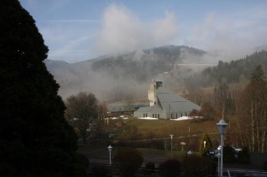 Schwarzwald Hotel Sonnenhof: Der Blick vom Hoteleingang