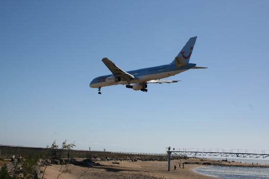 Hotel Floresta : Plane watching