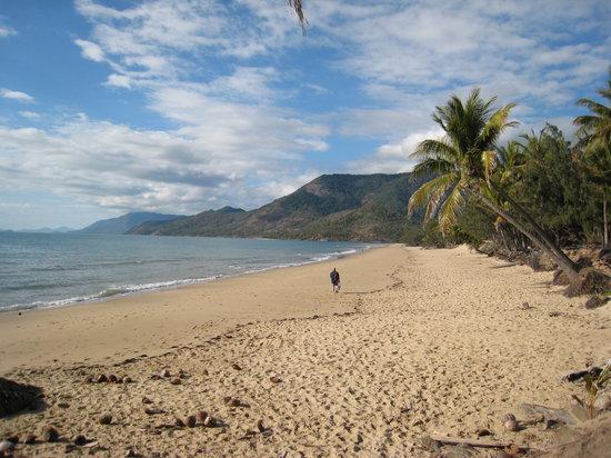 Oak Beach, Australië: la plage de l'hôtel