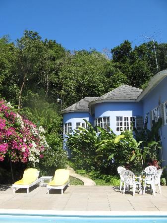 The Blue House Boutique Bed & Breakfast: View from the pool