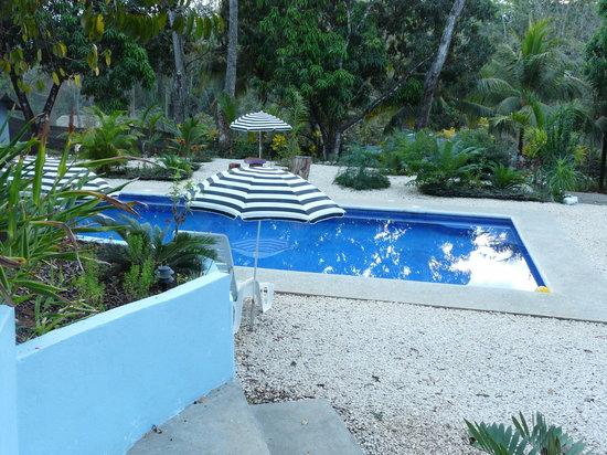 Photo of Tantel Hotel Cobano