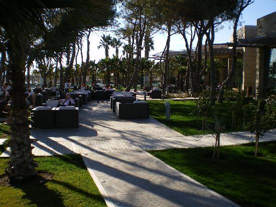 Gloria Serenity Resort: Couchen unter Palmen