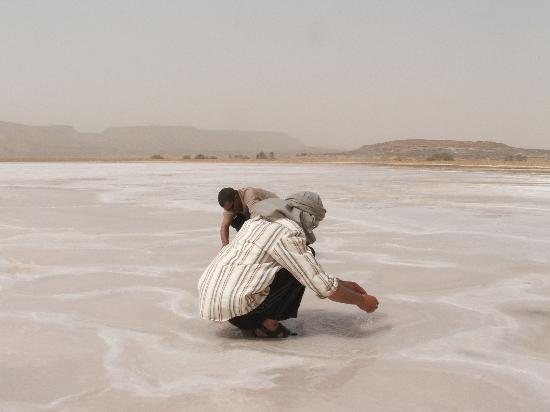 Sahara Desert: Bazimah Salt Lake
