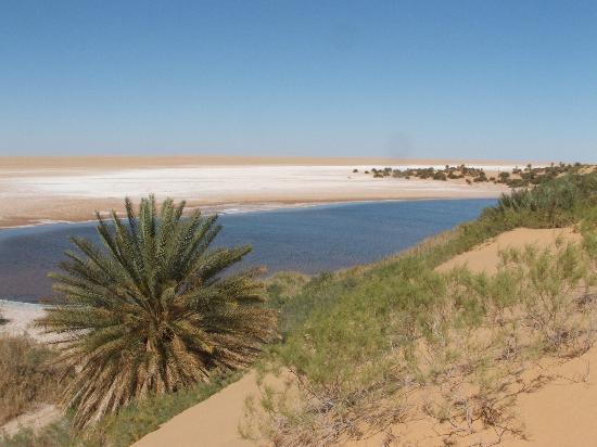 Sahara Desert: Tmassah Lake