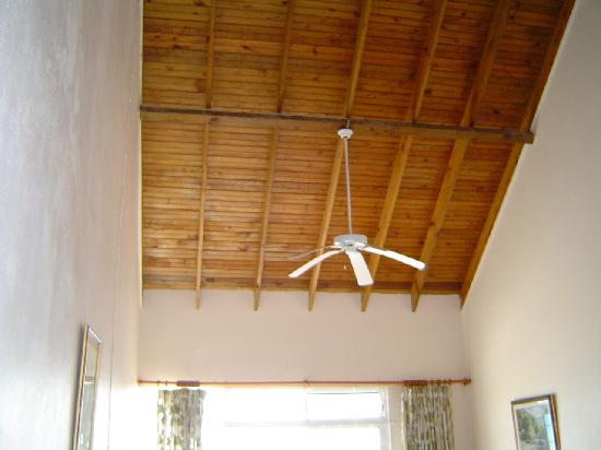 Whispering Bamboo Cove Resort: Loved the ceiling!