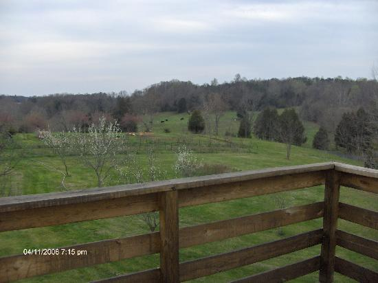Spring Grove Farm Bed and Breakfast: The view from the upstairs balcony