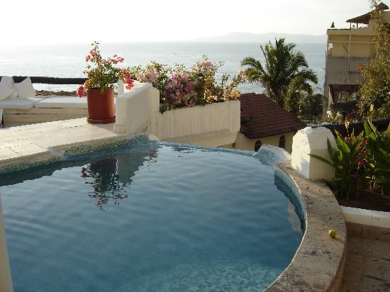 Ocho Cascadas: Villa 3 plunge pool