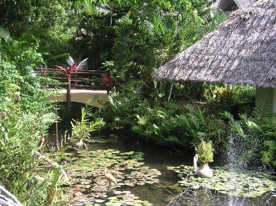 Leopard Beach Resort & Spa: parties communes