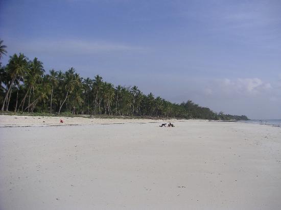 Leopard Beach Resort & Spa: la plage de l'hôtel