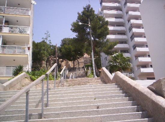 Steps To Vista Club Picture Of Vista Club Apartments Santa Ponsa
