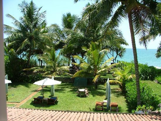 Garden Beach Hotel: Liegewiese