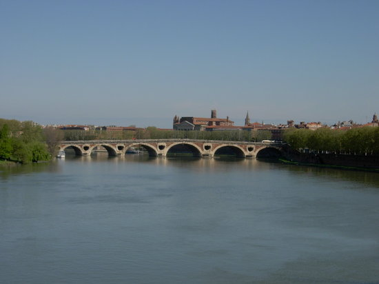 Crowne Plaza Toulouse: Pont Neuf