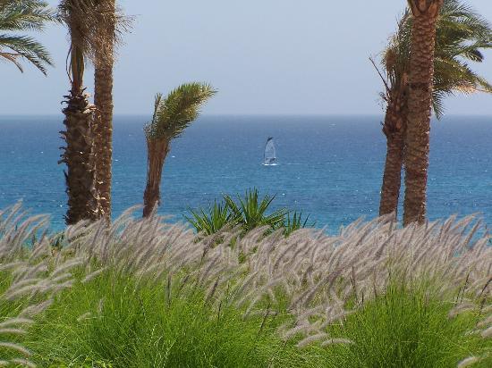Le Meridien Dahab Resort: Vue de la chambre