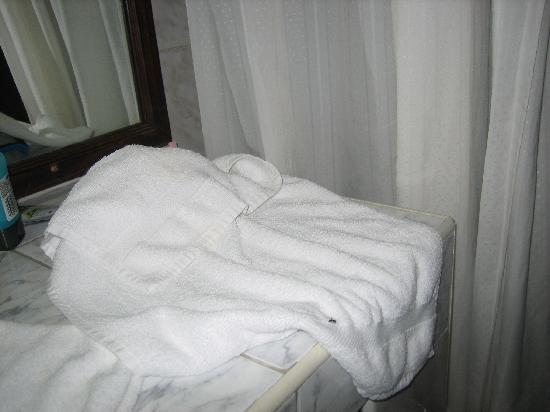Giravaru Resort : ants on the towels