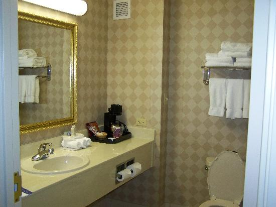 Holiday Inn Express Hotel & Suites Pine Bluff: Bath Amenities