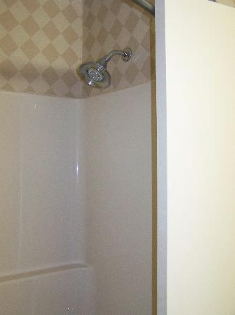Holiday Inn Express Hotel & Suites Pine Bluff: Shower