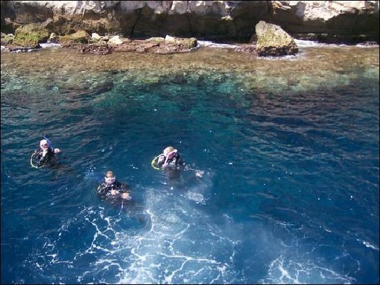 Camel Dive Club & Hotel : diving