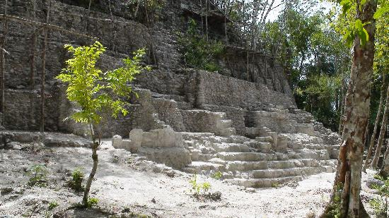 Peten Department, Guatemala: El Dante at El Mirador, the complex is 4 times bigger than Tikal