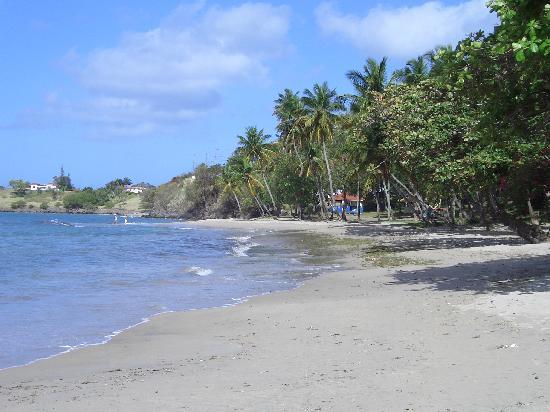 Mirage Beach Resort: The beach outside the garden gate