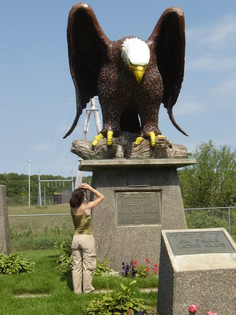 Chippewa Falls, WI: I think I see an eagle!!!
